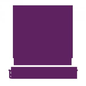 pixelmaster_icon